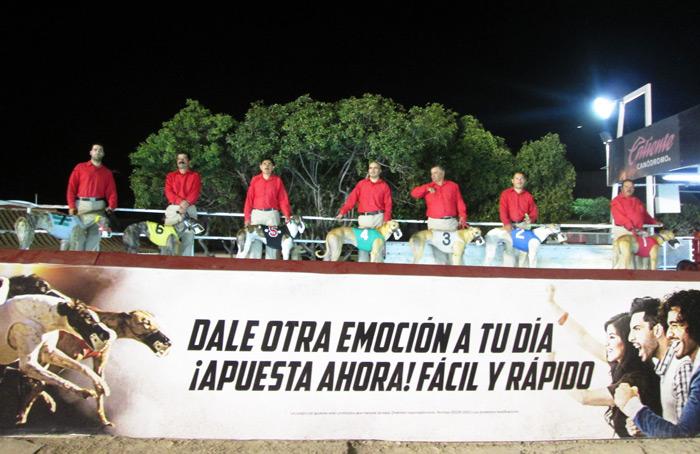 Tijuana-Mexico-caliente-greyhound-race