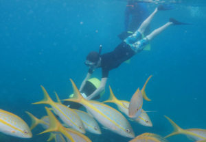 Power Snorkeling Dominican Republic on Fathom Cruise