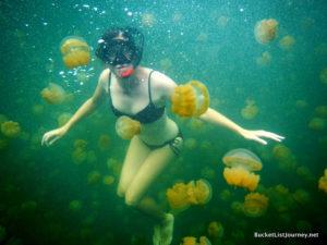 Lisa Niver Travel Writer jellyfish