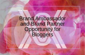Brand Ambassador and Brand Partner Opportunity for Bloggers