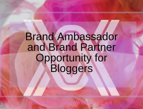 Brand Ambassador and Brand Partner Opportunity for Bloggers