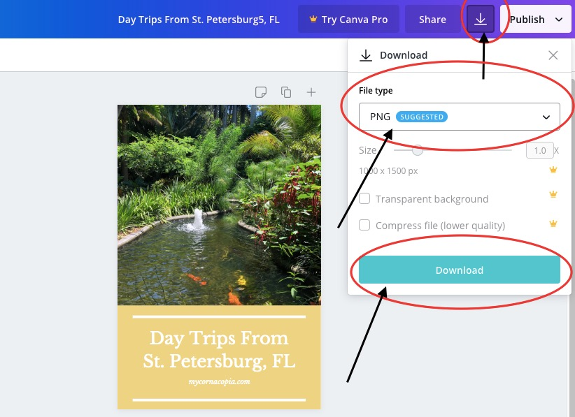 how to download from canva