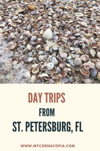 Day Trips From St. Pete pin example