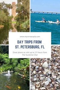 Day Trips From St. Pete pin example 2