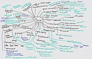 mindmap brainstorm for travel blog